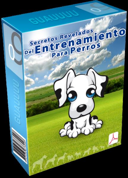 Los Secretos Revelados del Entrenamiento Para Perros